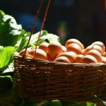 Do put all your eggs in one basket….!
